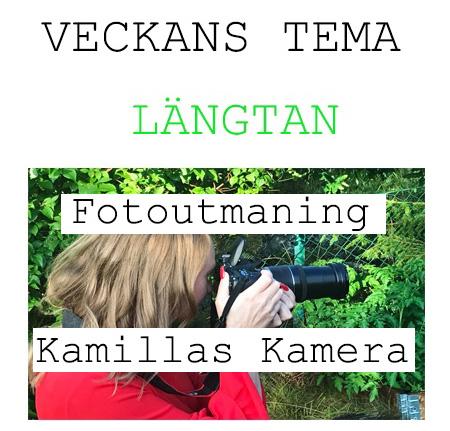 fotoveckans tema